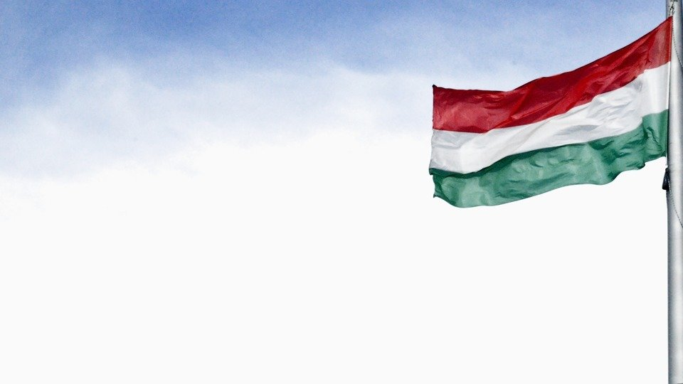 Well-administered Hungarian Parliamentary Election leaves space for greater youth engagement