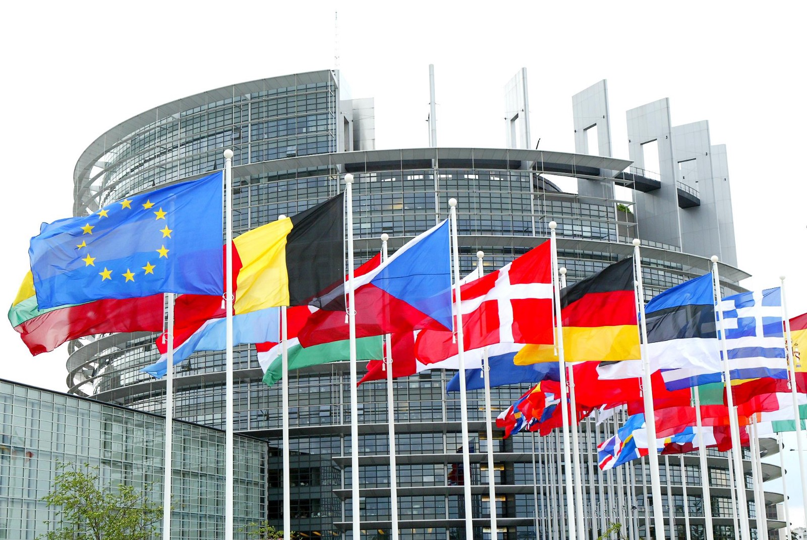 Call for Mission Coordinators – Mission to the European Parliament elections (23 – 26 May 2019)