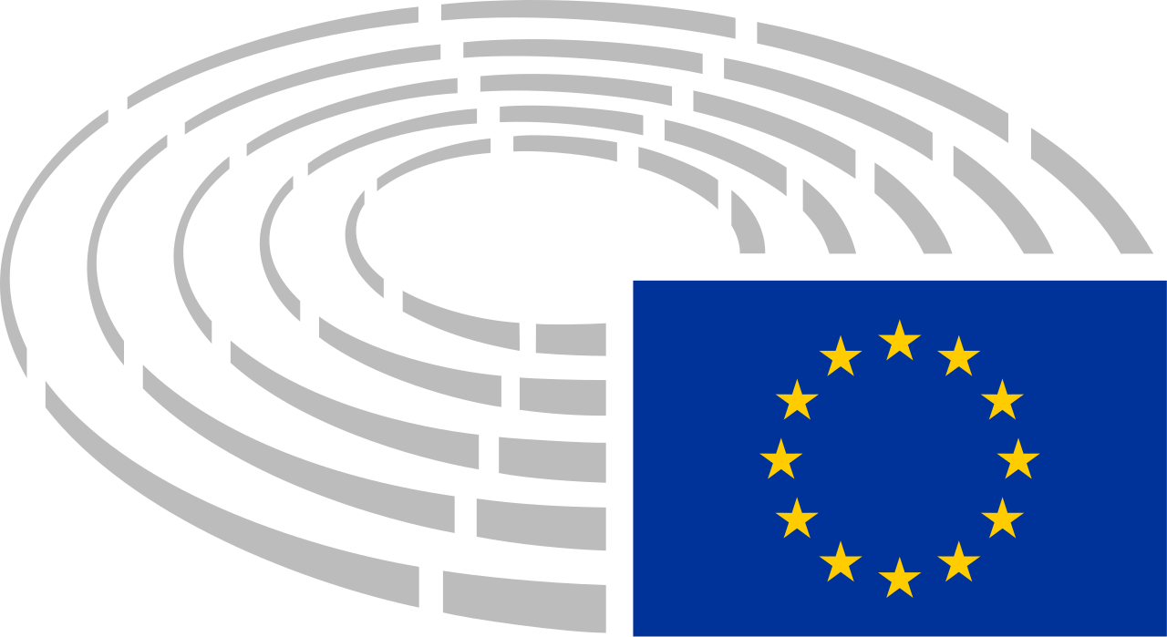 Preliminary Findings – Mission to the 2019 European Parliament Elections