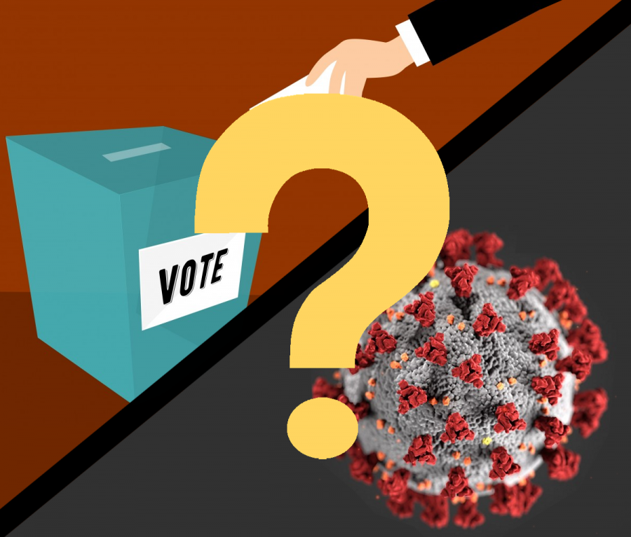 Elections under pandemic-related restrictions